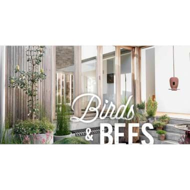 Birds and Bees | Plant Packages