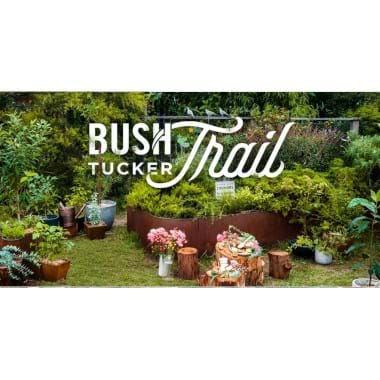 A Bush Tucker Trail | Plant Packages